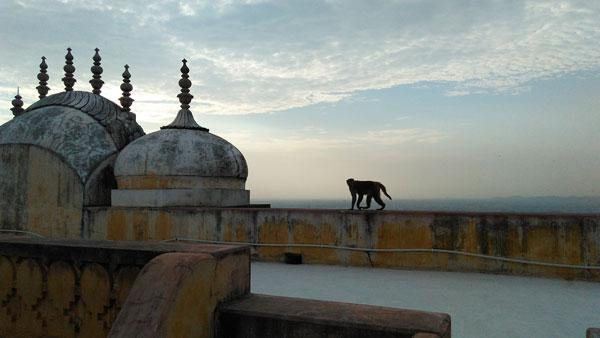 top view of nahargarh fort